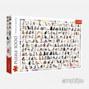 Puzzles Trefl 10498