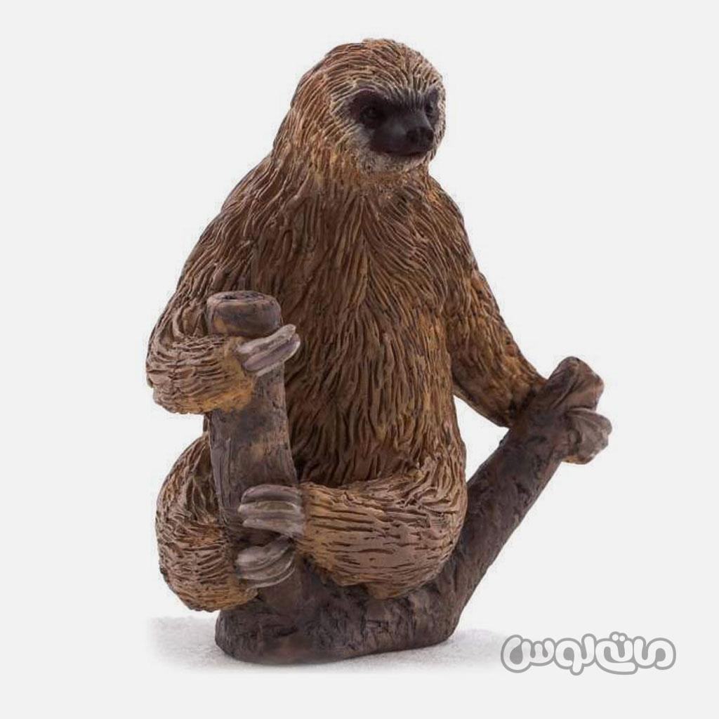 فیگور تنبل نشسته روی شاخه قهوه ای رنگ موجو
