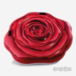 شناور روی آب گل رز قرمز