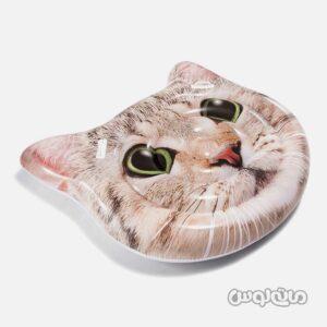 شناور بادی گربه بست وی