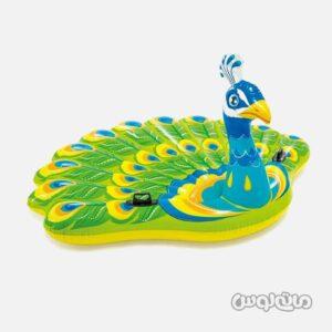 شناور روی آب طرح طاووس بادی اینتکس