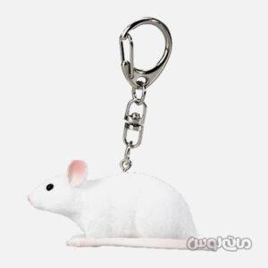 جاکلیدی موش موجو